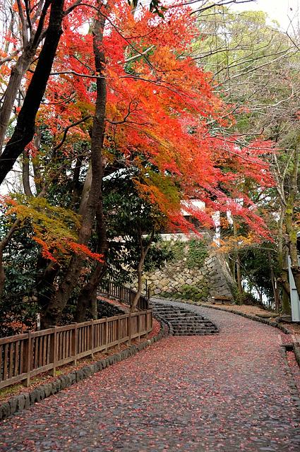 inuyama-jo3.jpg