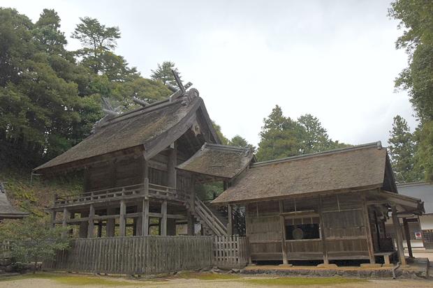 kamosu-jinjya04.jpg