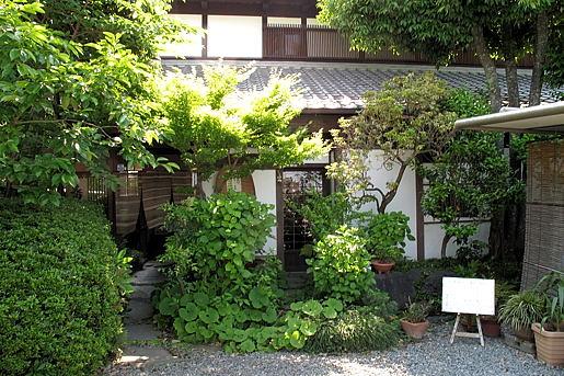 ooigawa3.jpg