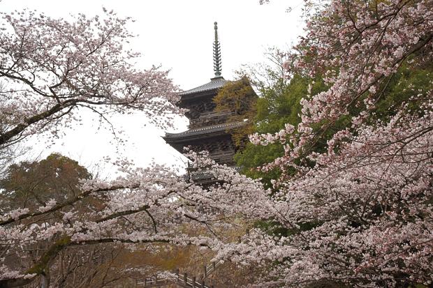 kiyomizu-tera08.jpg